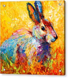 Forest Bunny Acrylic Print by Marion Rose