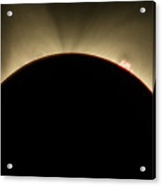 Great American Eclipse Prominence 16x9 Totality Prominence 16x9 As Seen In Albany, Oregon. Acrylic Print by John King