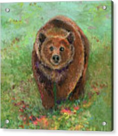 Grizzly In The Meadow Acrylic Print by Lauren Heller
