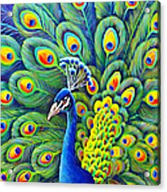 His Splendor Acrylic Print by Nancy Cupp