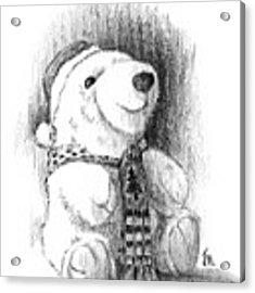 Holiday Bear Acrylic Print by Joe Winkler