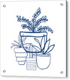 Indigo Potted Succulents- Art By Linda Woods Acrylic Print by Linda Woods