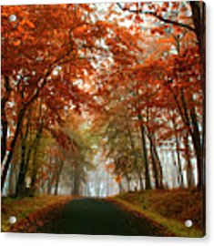 Inner Line Road At Valley Forge Acrylic Print by Rima Biswas