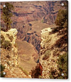 Into The Canyon Acrylic Print by Susan Rissi Tregoning