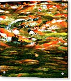 Koi Flux Acrylic Print by Yen
