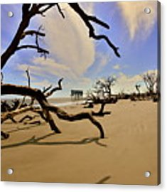 Little Blue And Driftwood Beach Acrylic Print by Lisa Wooten