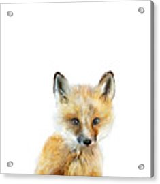 Little Fox Acrylic Print