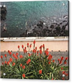 Looking Down, Angra Do Heroismo, Terceira Island Of Portugal Acrylic Print by Kelly Hazel