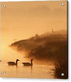 Magical Misty  Morning Acrylic Print
