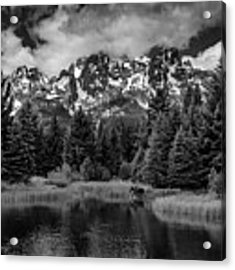 Moose At Schwabacher's Landing Acrylic Print by Gary Lengyel