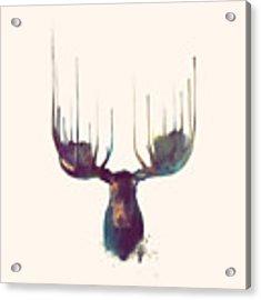 Moose // Squared Format Acrylic Print