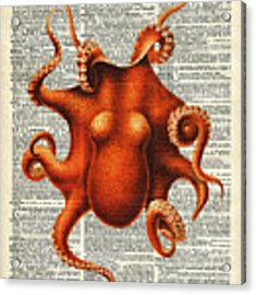 Octopus Vintage Illustration On A Book Page Acrylic Print by Anna W