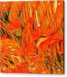 Orange Art Acrylic Print by Colette V Hera Guggenheim