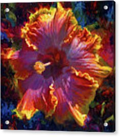 Rainbow Hibiscus Tropical Flower Wall Art Botanical Oil Painting Radiance  Acrylic Print by Karen Whitworth