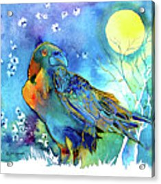 Raven Night Spirit Acrylic Print by Jo Lynch