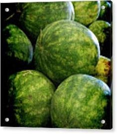 Renaissance Green Watermelon Acrylic Print by Jennifer Wright