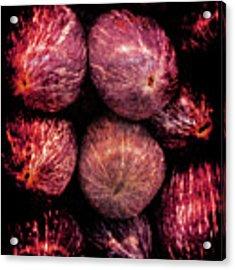 Renaissance Turkish Eggplant Acrylic Print by Jennifer Wright