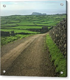 Road Through The Pastrues Of Terceira  Acrylic Print by Kelly Hazel