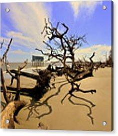 Sand Sun Beach And Little Blue Acrylic Print by Lisa Wooten