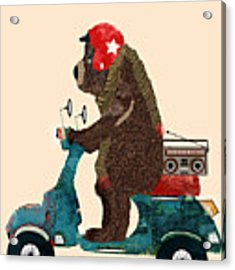 Scooter Bear Acrylic Print by Bri Buckley