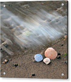Shells In The Sand Acrylic Print by Angela Murdock