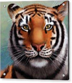 Siberian Tiger Acrylic Print by Angela Murdock