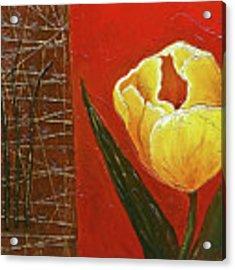 Spring Messenger Acrylic Print by Phyllis Howard