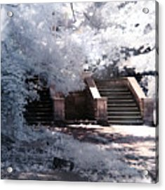 Stairway To Heaven Acrylic Print by Helga Novelli