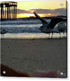 Stretching At Sunrise Acrylic Print by Robert Banach