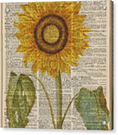 Sunflower Over Dictionary Page Acrylic Print by Anna W