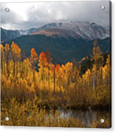 Vivid Autumn Aspen And Mountain Landscape Acrylic Print by Cascade Colors