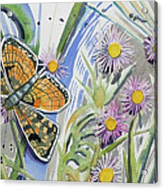 Watercolor - Checkerspot Butterfly With Wildflowers Acrylic Print by Cascade Colors