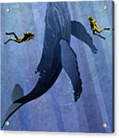 Whale Dive Acrylic Print by Sassan Filsoof
