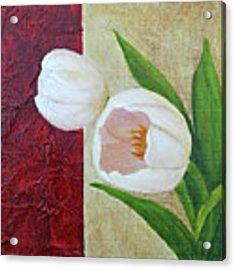 White Tulips Acrylic Print by Phyllis Howard