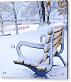 Winter Bench Acrylic Print by Elena Elisseeva
