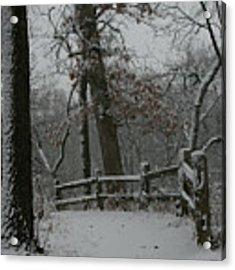 Winter Fence Trail Acrylic Print by Dylan Punke