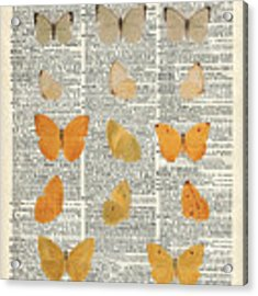 Yellow Butterflies Over Dictionary Book Page Acrylic Print