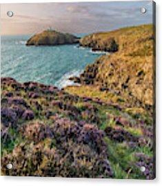 Strumble Head Lighthouse Acrylic Print by Elliott Coleman