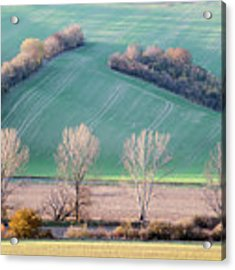 Autumn In South Moravia 2 Acrylic Print by Dubi Roman