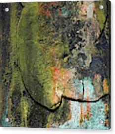 Art Print Rust 6 Acrylic Print by Harry Gruenert