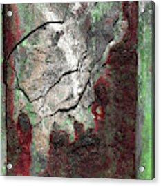 Art Print Rust 7 Acrylic Print by Harry Gruenert