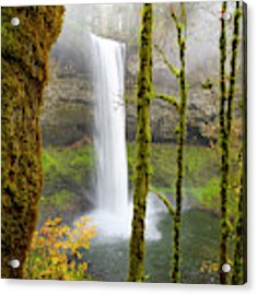 Autumn At Silver Falls State Park Acrylic Print by Nicole Young