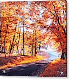 Autumn Calling Acrylic Print by Rima Biswas