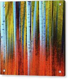 Autumn In Color Acrylic Print by John De Bord