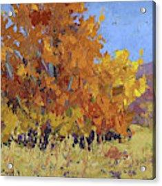 Autumn Treasure Acrylic Print by David King