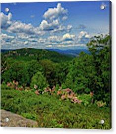 Bear Mountain, Mountain Laurel, Hudson River From West Mountain Acrylic Print by Raymond Salani III