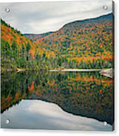 Beaver Pond Acrylic Print by James Billings