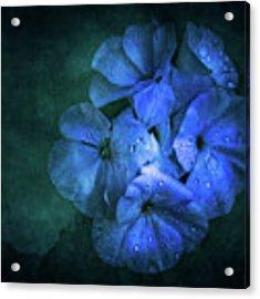 Blue Acrylic Print by Allin Sorenson