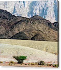Color Layers In The Desert Acrylic Print by Arik Baltinester