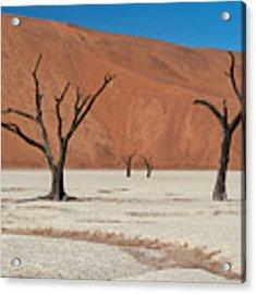 Deadvlei Namibia  Acrylic Print by Rand